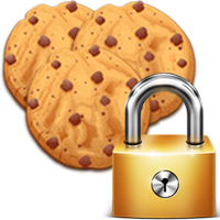 privacy and cookies icon